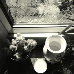 Helen Birch - still life