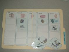5 senses folder