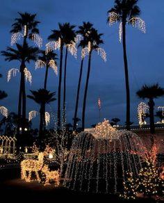 Mesa Temple Garden Christmas Lights in Mesa, Arizona