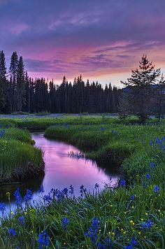 Packer Meadow Sunset, Graves Creek, Idaho, USA.