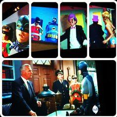 Get 'Em batman & robin!!  - @foxymama923- #webstagram