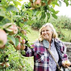 Apples mean big business in Henderson County. And for third-generation orchardists like the Creasmans, they're a way of life.