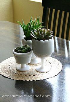 succulents in milk glass. so pretty.
