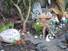 miniatur garden, fairi garden, fairi fun, miniature gardens, rock, garden cont, garden features