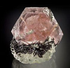 Morganite on Schorl - Urucum Mine, Minas Gerais, Brazil