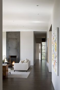 hous interior, architects, metal fireplaces, portland, live roomsfamili