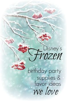 Frozen Birthday Party Supplies and Favors www.spaceshipsandlaserbeams.com