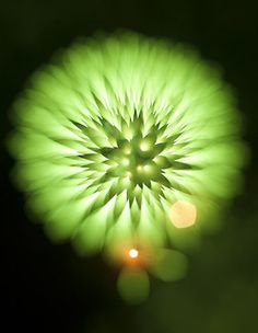 Long exposure fireworks  I really enjoy when the opposite focus pull is used. The giant space dandelions have an interesting look to them.