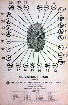 Forensic Science: Fingerprints