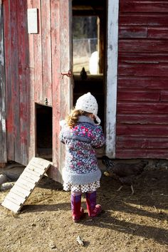 visiting the henhouse...