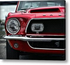 shelby-I really want a vintage mustang!