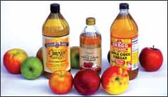 The Benefits of Apple Cider Vinegar to Dogs - Whole Dog Journal Article
