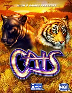 Cats - Slot Game by H5G
