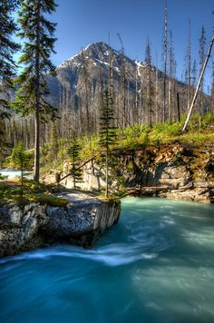 Marble Canyon, Kootenay National Park by D-Niev, via Flickr; British Columbia, Canada
