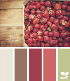Kitchen colors.