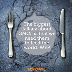For a growing global population facing dwindling resources, non-GMO plant-based proteins are the future, says 29-year-old non-GMO and organic soybean and corn supplier World Food Processing (WFP). Learn more about how GMOs are not needed to feed the world: http://www.foodnavigator-usa.com/Suppliers2/The-biggest-fallacy-about-GMOs-is-that-we-need-them-to-feed-the-world-WFP #GMOs #nonGMO #hunger #food