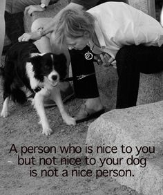 A person who is nice to you, but not nice to your dog is not a nice person.