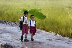 Happy, enterprising boys create a makeshift umbrella on a rainy walk to school