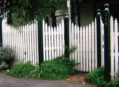 Windsor Timber Picket Fencing with Exposed Post