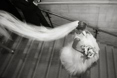 Ira Lippke: Best Wedding Photographers 2012 | American Photo