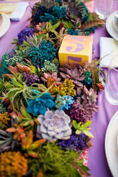 One amazing succulent tablescape!