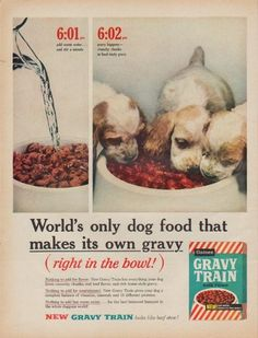 Who Makes Gravy Train Dog Food