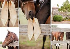 such a fun shot - shoes with the horses!