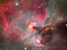 The Great Nebula (M42) in Orion   (credit & copyright: Robert Gendler)