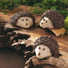 Hedgehog Cookies Recipe