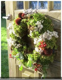 gorgeous moss and herb wreath