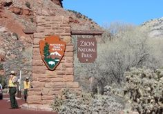 Zion National Park, one of my favorite places in the world