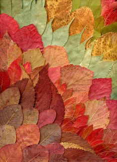 dried leaves (by horticultural art)