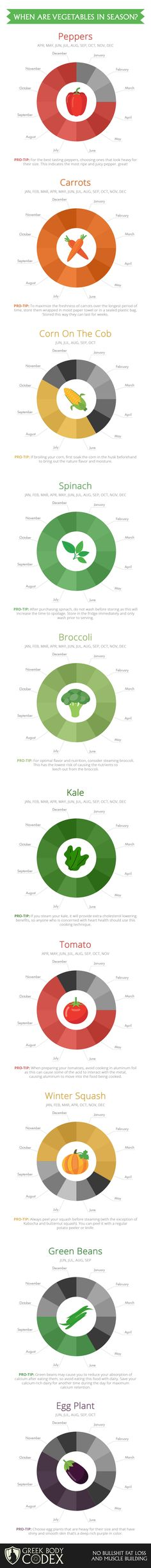 When Are Vegetables in Season? by greekbodycodex #Infographic #Seasonal_Vegetables