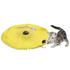 Cat's Meow Toy Review - How Well Does It Work? | As Seen On TV Product Reviews