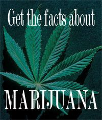 Get The Facts About Marijuana -  Why do people use marijuana?  How can I prevent my child from using marijuana?  How can I tell if my child has been using marijuana?  How does marijuana work?  http://www.jacksongov.org/content/5243/7150/7155/7158.aspx