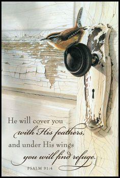 Psalm 91:4.