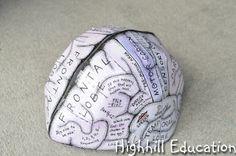 Highhill Homeschool: Human Body Unit - Brain