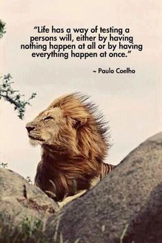 Life has a way of testing a person's will, either by having nothing happen at all or by having everything happen at once. Paulo Coelho