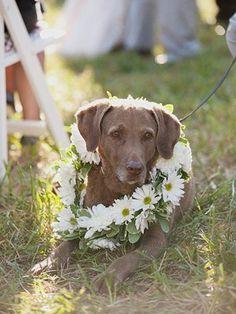 Hope and Grace - Wedding Blog