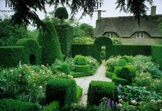 Manicured formal garden with low buxus hedging bordered by a tall taxus bacata hedge | #classicalgarden #formalgarden