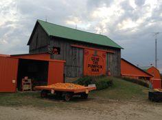 Gene the Pumpkin Man since 1957 Kalamazoo, Michigan
