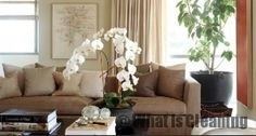 """A few Feng Shui ideas for the living room"" - #cleaning tips"