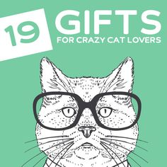 19 Funny Gifts for Cat Lovers- a.k.a Crazy Cat Ladies (and guys).