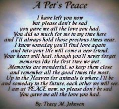 Pet Loss Sayings | Loss of a Pet Quotes image search results