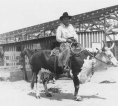 James Jeffries, former Heavyweight Champion of the World, riding a steer, circa 1945. Burbank Historical Society. San Fernando Valley History Digital Library.