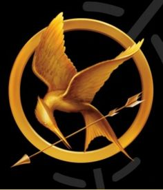 film, costum, the hunger, the game, hunger games trilogy, hunger games series, book, favor, bible studies