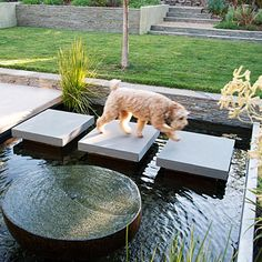 gorgeous courtyard water feature with stepping stone pavers across it (dark pebbles lining the pool also make it more reflective) Sunset Magazine