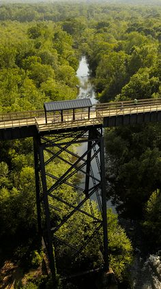 Thirty one miles of abandoned railroad was donated to Virginia State Parks. The High Bridge Trail State Park was converted from a railroad to a hiking trail for bicyclists, horseback riding & walking.  The last train to cross the bridge over Appomattox River was 10/26/2004. Photo by pcopros, via Flickr