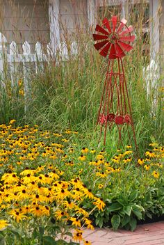 Black eyed susans and ornamental grass...a perfect setting for the red windmill
