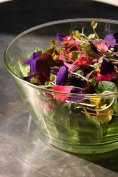Insalata fiorita, germogli e fiori - sandrablog.it